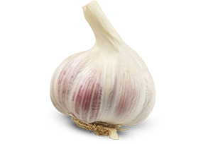top5_garlic